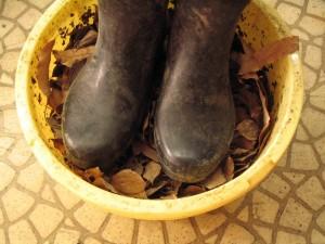 落葉を長靴で踏んづける