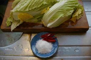 白菜とトウガラシと塩